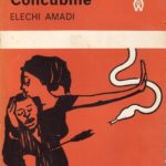 The Concubine by Elechi Amadi