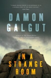 In a Strange Room: Three Journeys by Galgut Damon